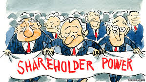 shareholder power