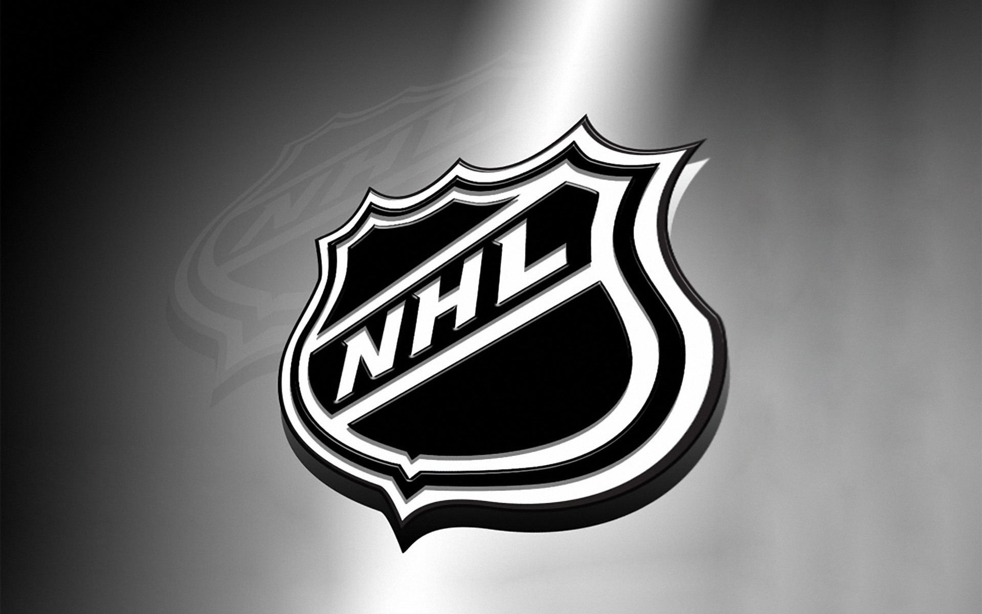 Image result for nhl logo